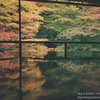 【後編】「写ルンです」2本で京都を撮り歩いてきた話。COLA BLOG 3周年プレゼント企画!