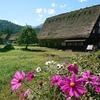 【日本の原風景】世界遺産 白川郷