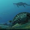 2億2800万年前の亀には、甲羅がなかった