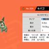 ポケモン剣プレイ中10