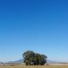 これは、生で見てほしい風景・青天の霹靂