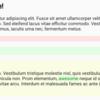 M3 USA 出張記 #6: Arrayの差分を検出するJavaScriptライブラリ array-diff-itemsを開発・公開しました