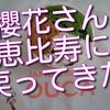 ジャパニーズアイス櫻花さんがやっと恵比寿に戻ってきた!今日OPEN!
