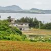 エポック石垣島車エビ養殖場の池(沖縄県石垣島)