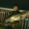 琵琶湖オカッパリ!