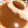 【グルメ】新宿の駅地下で食べたメンチカツカレー☆
