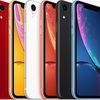 iPhoneXR 将来的には5色展開になる可能性