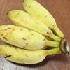 新鮮・お買い得!沖縄ファーマーズマーケット。ブラジルバナナやウコンなどを買いました。