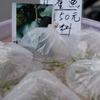 台南  孔雀魚です