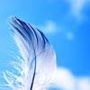 諸葛孔明は現実に「白羽扇」を持っていたか?