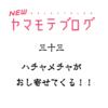 NEWヤマモテブログ (33)