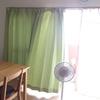 カーテンの洗濯。ほこりが落ちて、すっきり