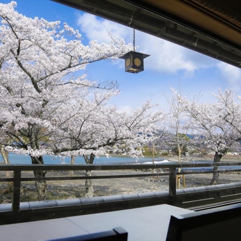 今年は席に座ってゆっくりと!お花見気分で桜を眺められるレストラン&カフェ6選