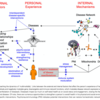 ネットワーク障害の兆候としてのMultimorbidity