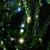 新年の魔法の瞬間~雫のプリズム~
