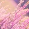 【日経225先物mini】年初来高値を更新・・・20191016