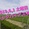 2019,6,1 土曜日 トラックバイアス予想 (東京競馬場、阪神競馬場)