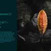 Adobe PhotoshopLightroom CC速攻レビュー(クラウド版)