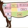牛肉の部位 値段順に並べると!牛ヒレはどこで買うと一番安いの?