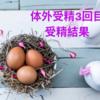【不妊治療】3回目の体外受精・受精確認とマーベロンでのお休み周期