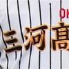 愛産大三河 ー 豊田工業 観戦記(第101回全国高校野球選手権愛知大会1回戦)