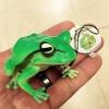 ゲームセンターの景品で蛙をみつけたので捕まえてきた!