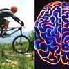 人間はいかに学び、能力を進化できるのか? ◆ 「人体:学習能力のヒ・ミ・ツ」