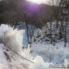 池袋から1時間半で見られる冬の幻想世界