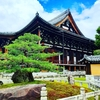 京都ぶらり 初参拝 金戒光明寺