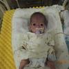 経口哺乳の練習を開始しました!生後6か月(修正5カ月)