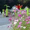 入り口と季節を間違えた花の国で娘と遊ぶ。