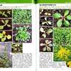 ユニークな植物入門図鑑2冊