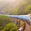 憧れの極上列車で満喫する!プチ贅沢な旅 ♪