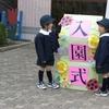 自治体のお役立ち情報。兵庫県伊丹市では、4歳児と5歳児の保育料が全額無償化となります。