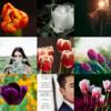 アメブロ、Instagram、Facebookに作家「STM_kurosawa」さんの詩をご紹介しました。