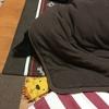 年末警戒発動中、甲斐犬サンは解除中!( ゚Д゚)⊃旦 チャノメヤ。