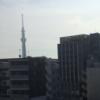 【お出掛け】ミントさんと東京へ③