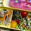 ヨメさん弁当〜中華丼の具・豚そぼろ・かぼちゃの煮物〜