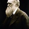 ダーウィンの進化論を名言と共にポップに仕上げてみた件