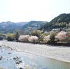 徳島7日目① 潜水橋~桜の渓谷~こもれびCAFE
