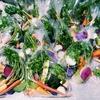 彩り鮮やか!無農薬野菜「あんがとう農園」さんのバーニャカウダセット