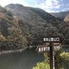 雲取山① 紅葉シーズンに鴨沢ルートから登る 2018.11.11~11.12