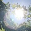 日焼けの季節がやってきました!!