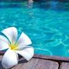 毎月海外旅行したい!!!!
