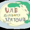 子宮筋腫のUAE手術について、体験をまとめたよ