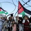 Song for Palestine もしくは Stop The Music #2 (2011. Pink Floyd)
