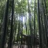 鎌倉・江ノ島。そして今日捨てたもの。