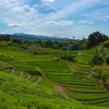 日本の棚田の美しさを後世のカメラ好きの人のためにも残してあげたい。