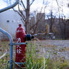 消火栓のある風景