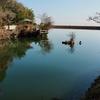 鏡池(三重県松阪)
